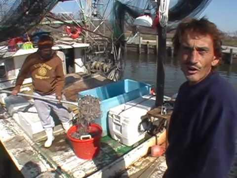 Embedded thumbnail for Hurricane Katrina: Shrimpers of Waveland