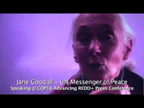 Embedded thumbnail for Jane Goodall Speaks at the COP 16